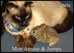 Mon Amour and Jumpy